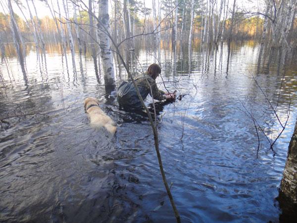 новочеркасск запрет на рыбалку
